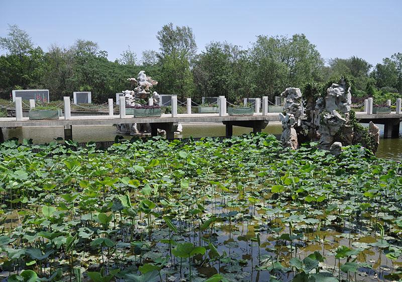 静安墓园景观图